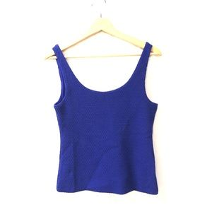 Club Monaco small blue sleeveless blouse